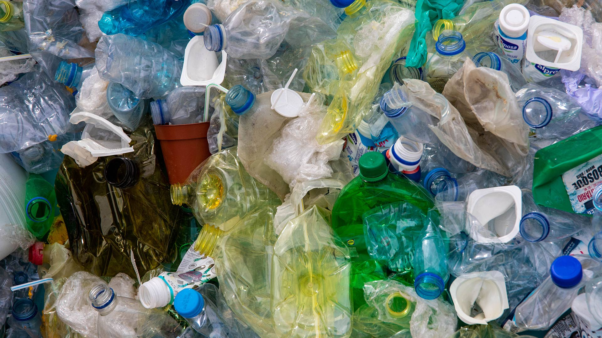 Take the Plastic Free July Challenge with Us!